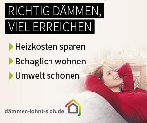 Banner Energiesparen für Deutschland der Kampagne Dämmen-lohnt-sich.de in Kooperation mit Bild